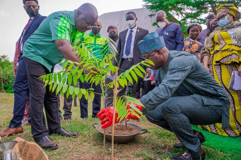 2nd year Anniversary: Makinde Launches Tree Planting Campaign in Oyo —  oyonews.com.ng